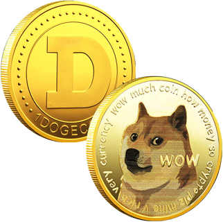 1oz Dogecoin Commemorative Coin Gold Plated Doge Coin 2021 Limited Edition with Protective Case