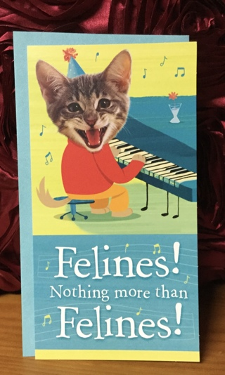 Cat Playing Piano Birthday Card & Envelope