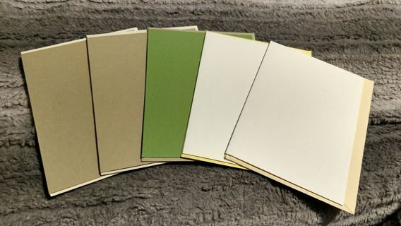 Card mats lot with envelopes included