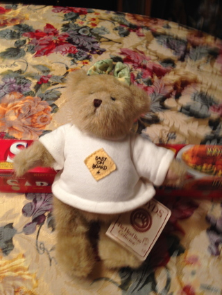 Boyds Bears Collectible Ima Late