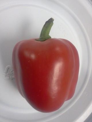 Red Bell Pepper 30 seeds