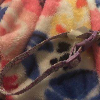 Never worn TWO dog cat pet collars size xs extra small 100% FREEEEE purple blue floral print cute!