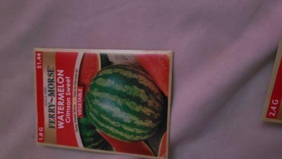 Watermelon - bag 4