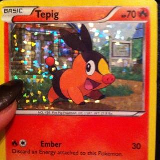 Holo Pokemon Tepig Card