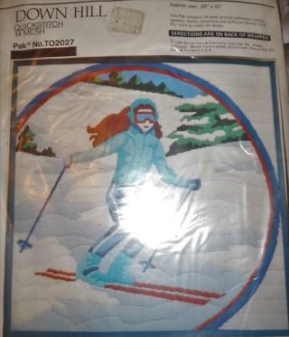 Quick Stitch Needle craft Kit - Down Hill Ski