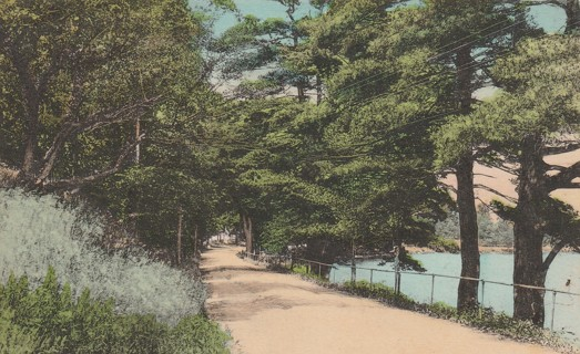 Vintage Used Postcard: 1928 Road Near Queechy Lake, Canaan, NY