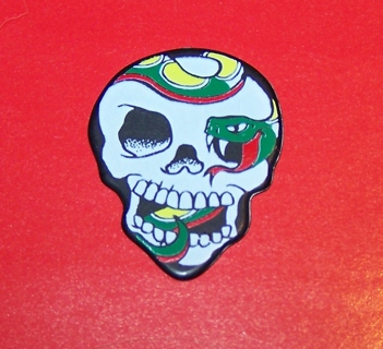 Guitar Pick ~ Skull shaped