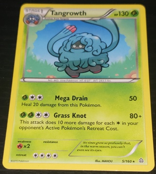 ⚡ Pokemon Card Tangrowth 5/160  ⚡130 HP Rare XY Primal Clash