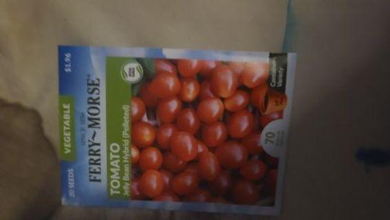 Tomato- bag 2