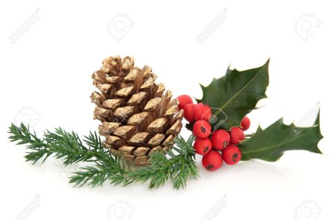 HOMEMADE CINNAMON SCENTED PINECONES (START EARLY) RECIPE ONLY