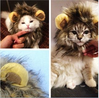 Pet Costume Lion Mane Wig Hat for Cats Halloween Xmas Clothes Fancy Dress with Ears Autumn Winter