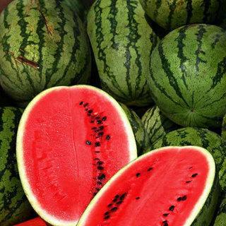 8 plus Heirloom Allsweet Watermelon seeds...