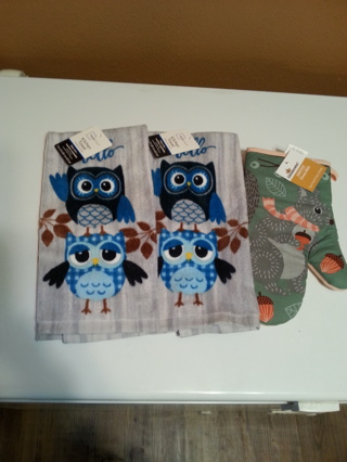 Cute owl  towels and squirrel oven mitt