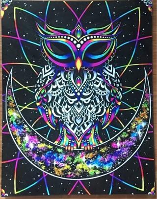 """NEON OWL - 3 x 5"""" MAGNET"""