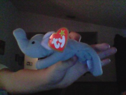 Free Righty The Elephant Beanie Baby Worth A Lot Of Money Dolls