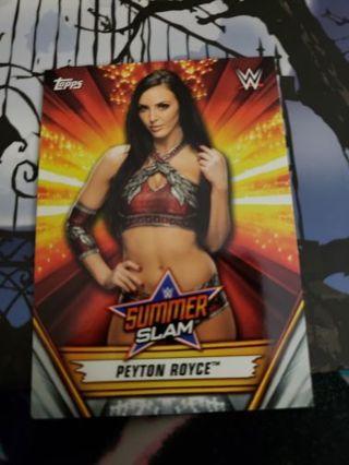 WWE SummerSlam Card Lot (2019)
