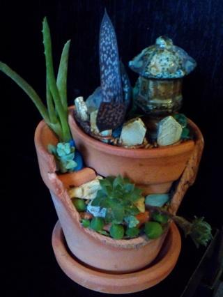 """MICRO """"BROKEN POT"""" FAIRY GARDEN  ***7 Succulent Species in 2"""" Miniature Clay Pot***"""