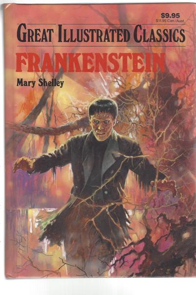 mary shelleys frankenstein A global cinema audience will this week watch danny boyle's stage production of frankenstein it's the latest take on mary shelley's famous gothic novel but what's the book really about the idea emerged from a summer that didn't happen due to the largest volcanic eruption for more than 1,600.