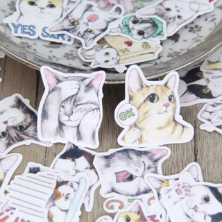 ♡ Real Cats Cute Kawaii High End Sticker Flakes Set of 10 NEW ♡