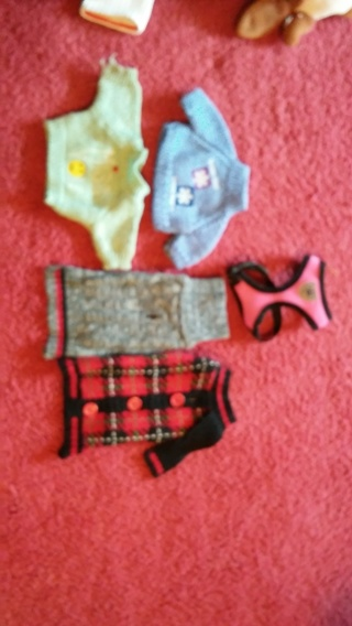 Dog/Cat/Animal  clothes & harness