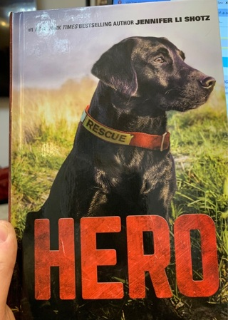 Hero - The Story of a Search-and-Rescue  Lab Dog