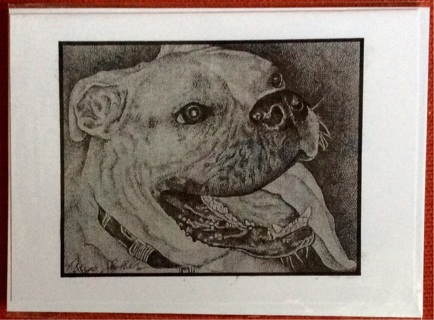 """BULL DOG - 5 x 7"""" ART CARD by artist Nina Struthers - GIN ONLY"""