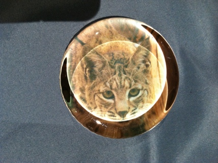 Paper Weight Glass Cat Vintage VGC