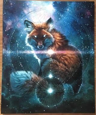 "COSMIC FOX - 3 x 4"" MAGNET"