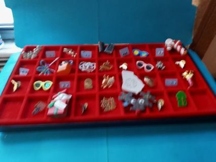 24 Mixed Pins and Earrings