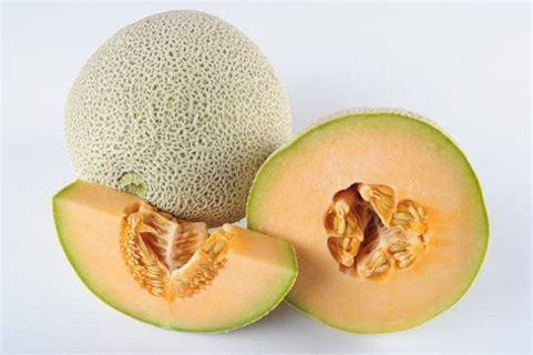 25 Cantaloupe Seeds ◠◡✿ FRUIT ✿◡◠