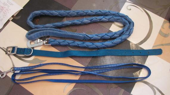 Dog Leashes & Collar