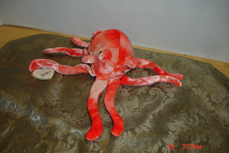 bede8536da5 Free  ty beanie baby (wiggly the squid) - Dolls   Stuffed Animals -  Listia.com Auctions for Free Stuff