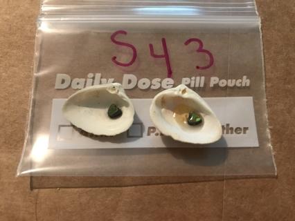 2 small shells   id S43
