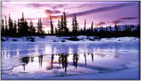 Scenic Snowscape Refrigerator Magnet #10