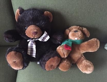 Plush Teddy Bear & Puppy Collectibles