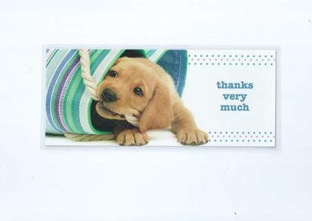Laminated Bookmark Mega Gift Assortment of 50 Bookmarks plus Thanks Bookmark Bonus