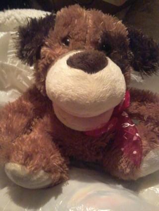 furry bear puppet that sings!