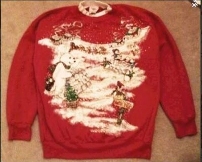 1 cute sweater pull over