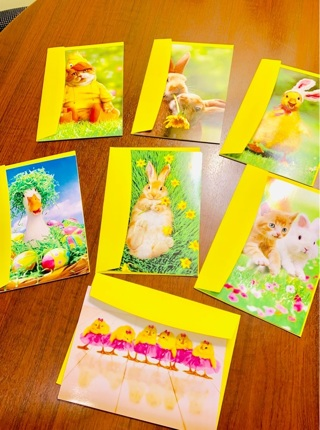 Avanti (Made in the USA) High Quality Special Collection of Easter Greeting Cards ~Cute Critters~