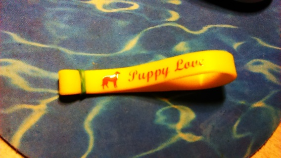 "1 Silicone Bracelet ""Puppy Love"" Yellow"