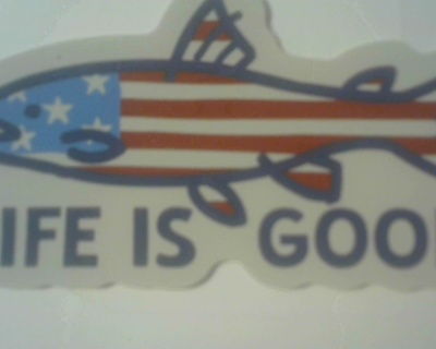 """""""Life is Good"""" Decal"""