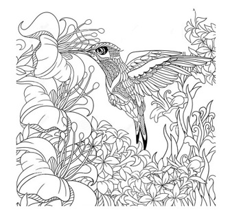 •❄• (New) 6 Adult Misc. Coloring Sheets •❄•
