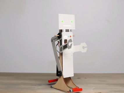 Walking Robot Ages 9-16+