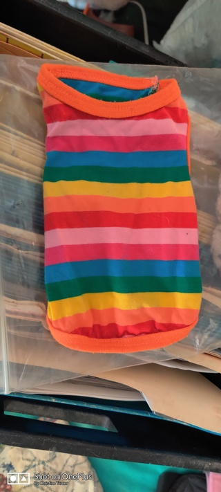 Small puppy tee shirt in rainbow stripes