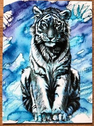 """TIGER IN BLUE - 4 x 3"""" MAGNET"""