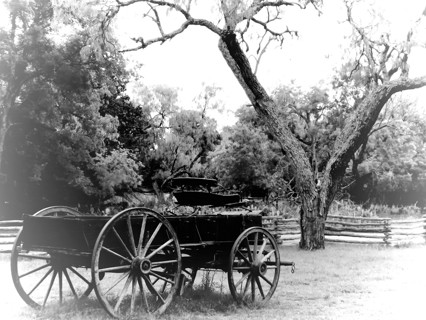 8by 10 Print Western Wagon in Black and white Nice gift or art for your House!