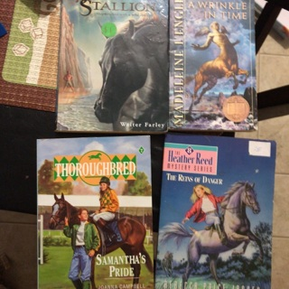 Horse lovers books