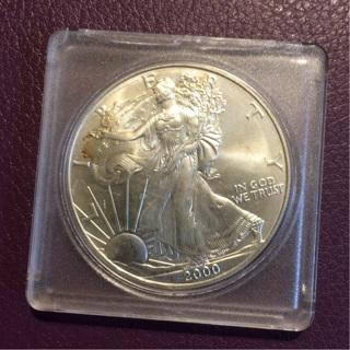 1 oz Fine Silver Dollar