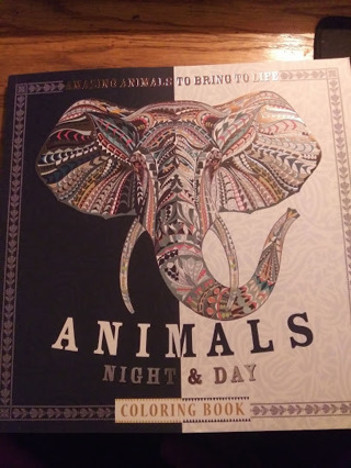 Animals Night & Day Adult Coloring Book