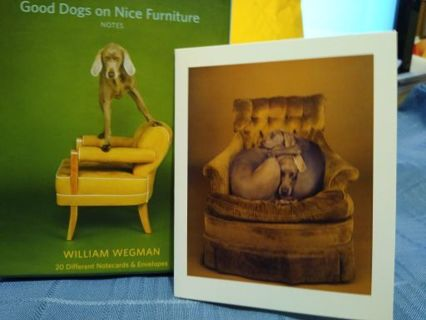 """CYCLOPS 1989 FROM """"GOOD DOGS ON NICE FURNITURE"""" CARD W/ ENVELOPE (#10)"""
